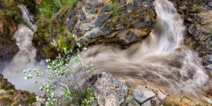 Shorts Creek